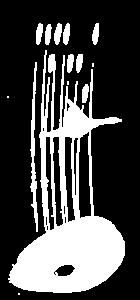 Λογότυπο κέντρου πληροφόρησης λίμνης Παμβώτιδας